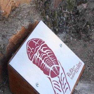 Ruta de los fósiles