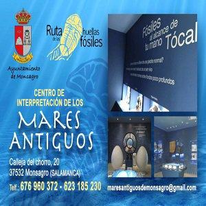 Museo de los Mares Antiguos